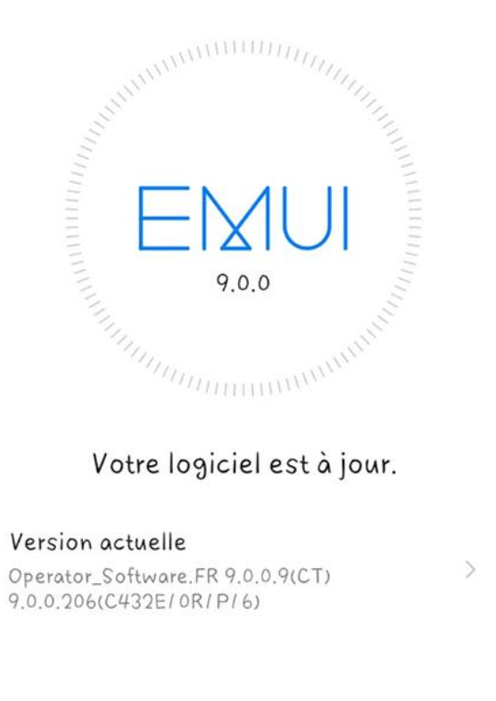 capture2-png.1112 Huawei Mate 20 / Mate 20 lite / Mate 20 PRO Mise à jour 9.0.0.187 mate 20 pro